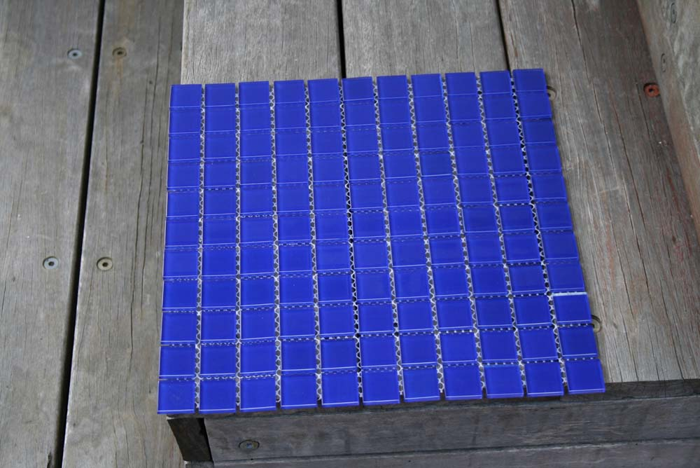 bluebell25