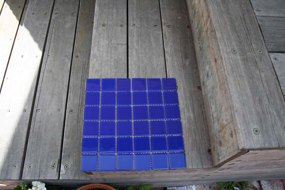 bluebell48